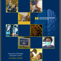Image of the cover of the Depression Center's 2020 Impact Report